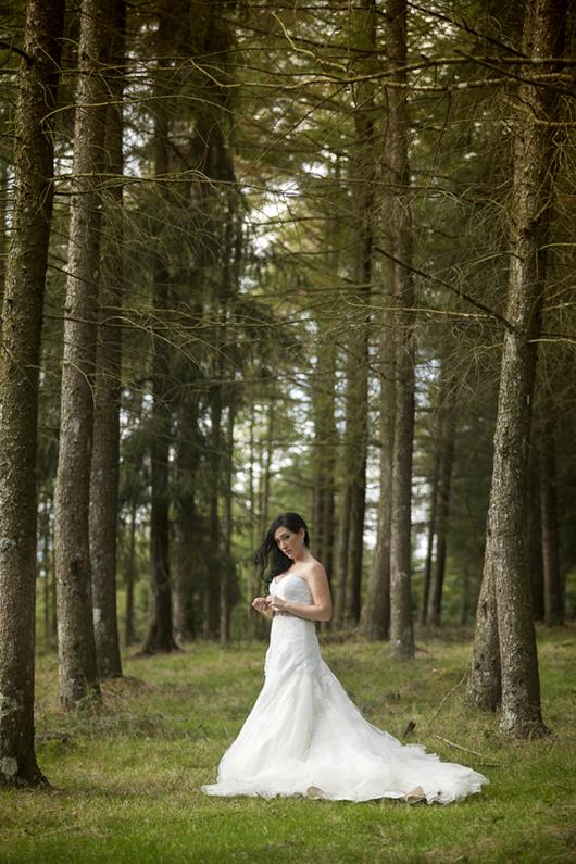 Ladrero Fotografos, reportajes de boda bilbao, fotos de boda bilbao, resumen15