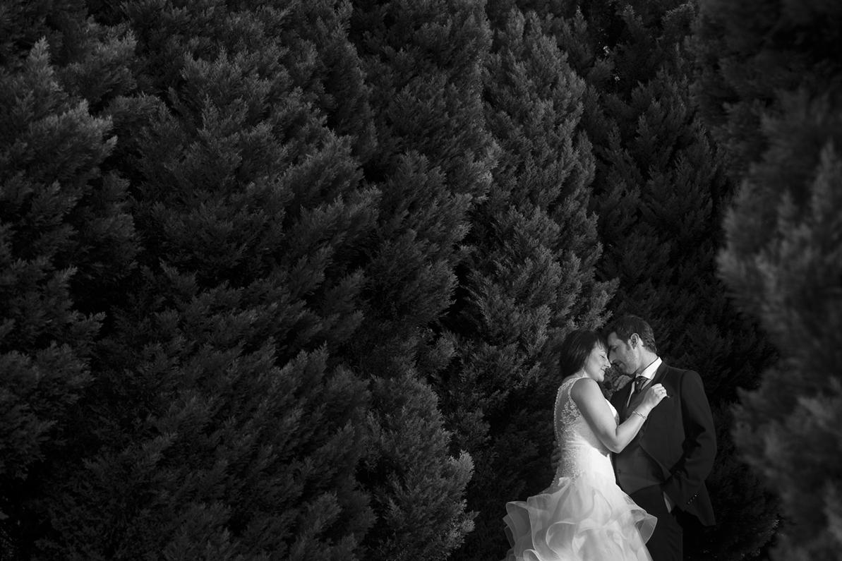 Ladrero Fotografos, reportajes de boda bilbao, fotos de boda bilbao, resumen41